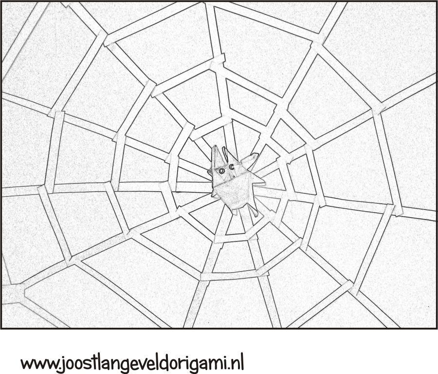 Kleurplaat Spin In Een Groot Web
