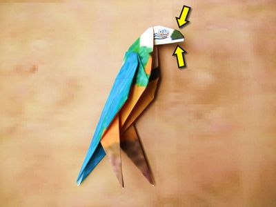 3D origami macaw parrot tutorial (instruction) | Origami parrot ... | 300x400