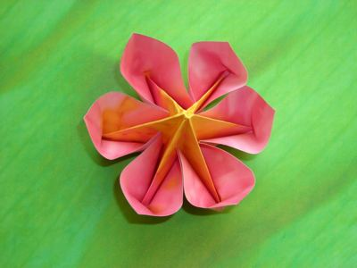 Joost langeveld origami page a flower with 6 petals origami mightylinksfo