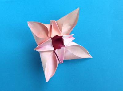 Joost langeveld origami page beautiful origami flower with four petals and a dark center mightylinksfo