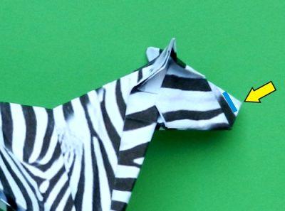 Origami Animals Tutorial: Origami Turtle - YouTube | 297x400