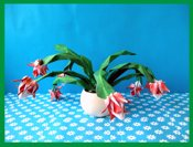 fold the same christmas cactus as in this picture